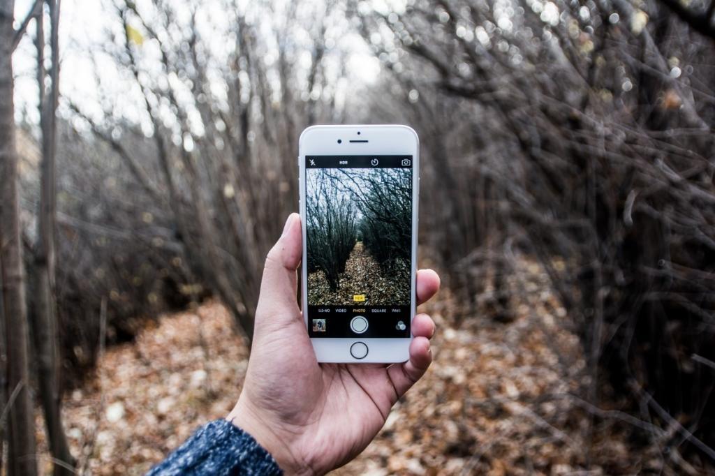 За дикой природой можно будет наблюдать с помощью смартфонов