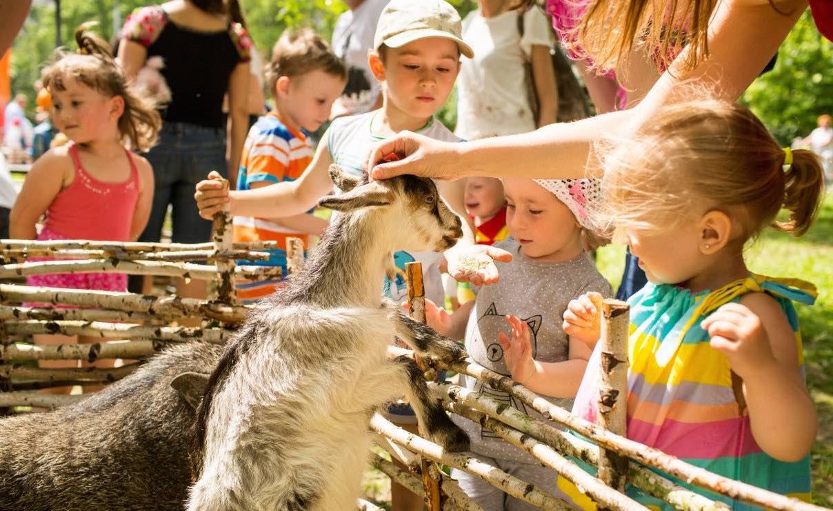Контактный зоопарк для малышей в Гала