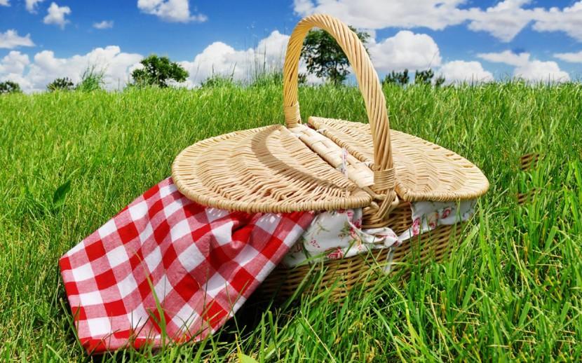 Семейный пикник и