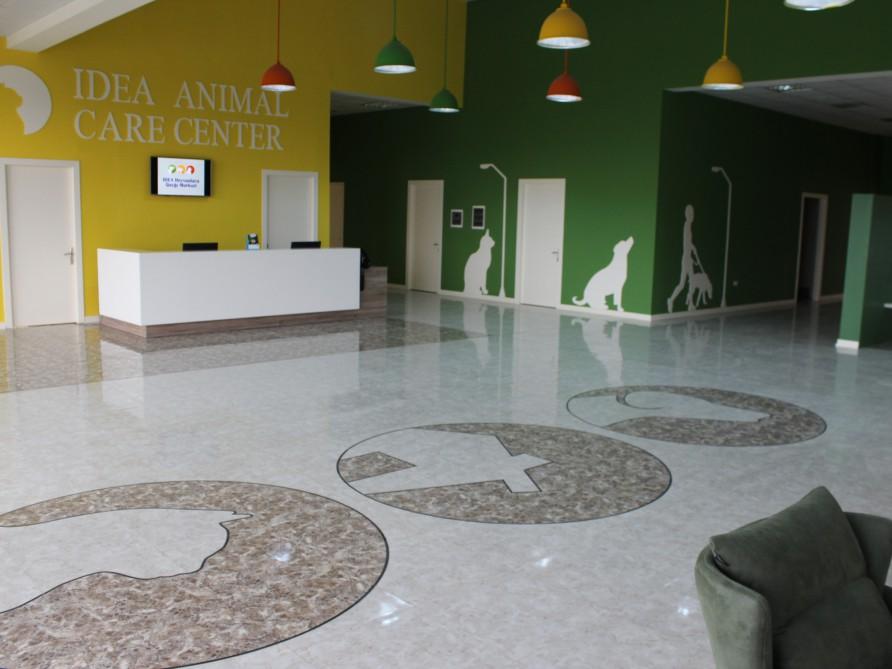 В Баку начал функционировать Центр по уходу за животными IDEA