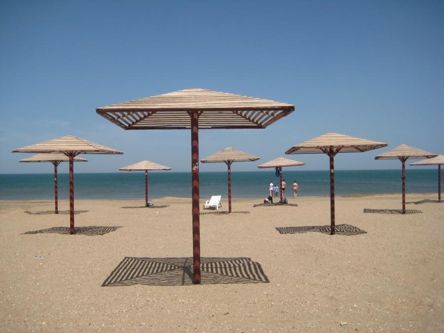 Названы пляжи, пригодные для пользования