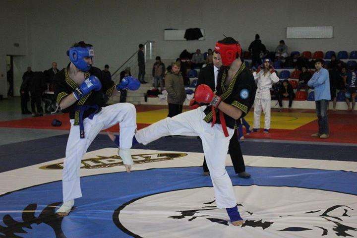 Семинар по тюркскому боевому искусству