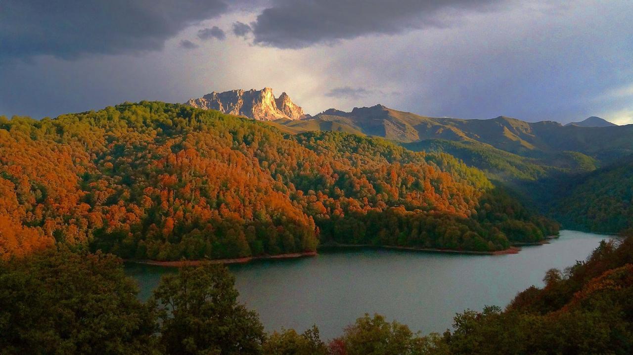 В нацпарках Азербайджана будет реализован новый проект