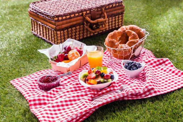Пикник-зона в Олимпийском стадионе