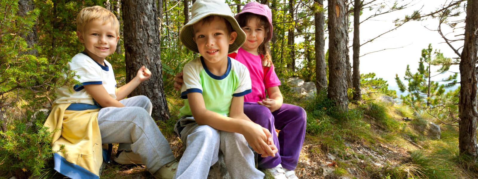 Summer Camp от Little Fox Academy