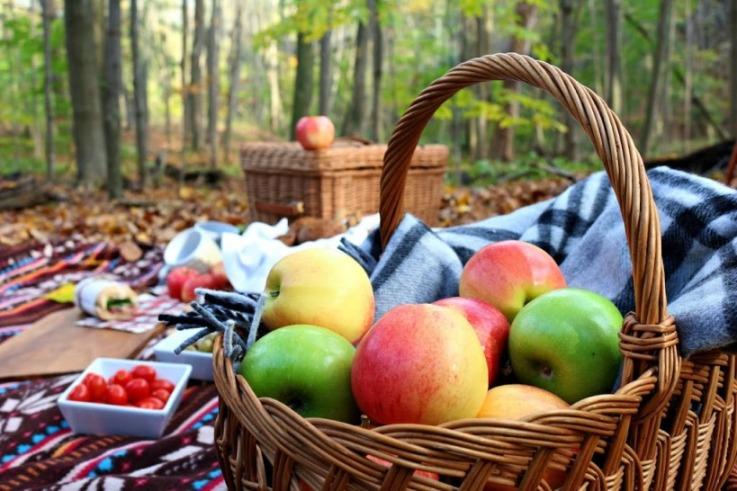 Осенний пикник в Ботаническом саду