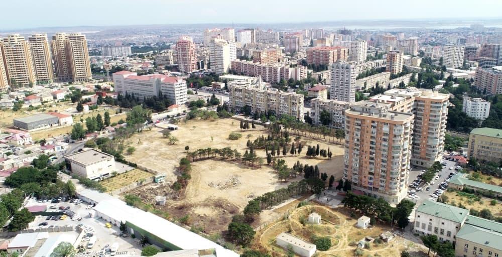 В Баку будет разбит новый лесной парк